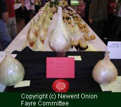 (c) Onion Show Committee, 1999.  Newent Onion Fayre.
