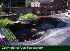 Heaters for garden fish ponds uk for Garden pond heater